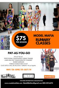 Professional Runway & Pose Training
